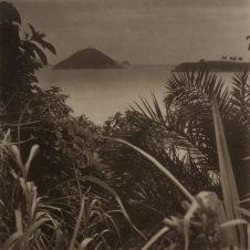 Takeshi Shikama (b. 1948) Urban Forest: Hong Kong #23 2018 Platinum palladium print on Japanese gampi paper H. 19 x W. 19 cm Boogie Woogie Photography, Hong Kong