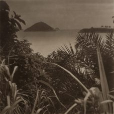 Takeshi Shikama (b. 1948) Urban Forest: Hong Kong #23 2018 Platinum palladium print on Japanese gampi paper H. 19 x W. 19 cm Boogie Woogie Photography, Hong Kong
