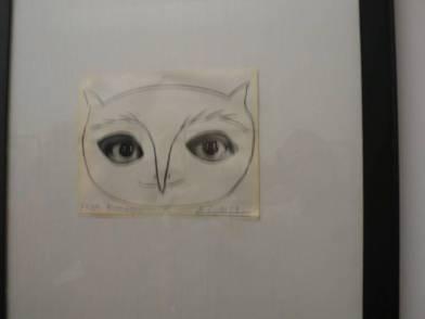 原來畢卡索鍾情貓頭鷹雙眼,而他以自己雙眼來自比貓頭鷹。